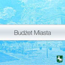 Budżet miasta